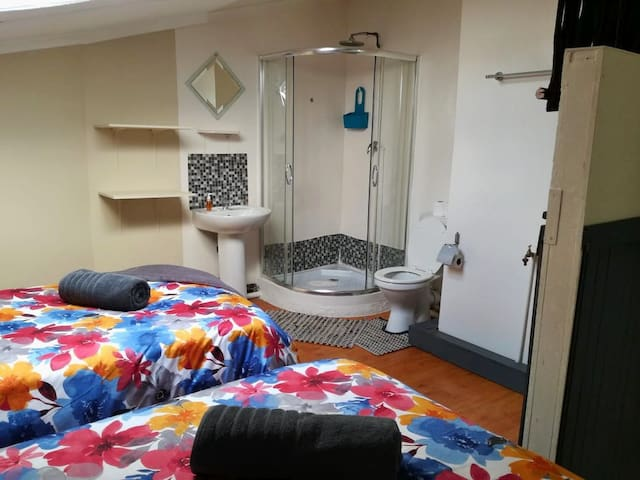 Open plan bedroom with bathroom