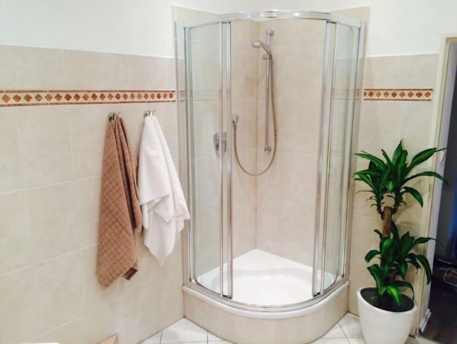 Geräumige Dusche im Badezimmer