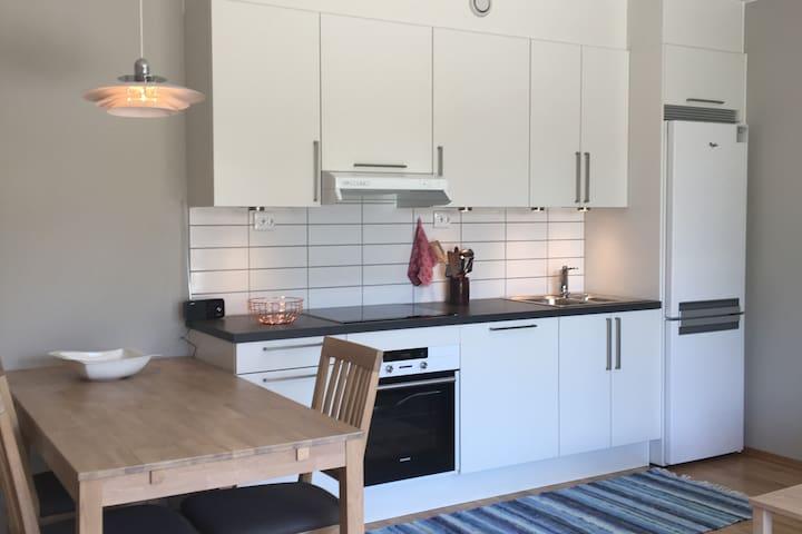 Koselig og moderne leilighet rett utenfor Oslo