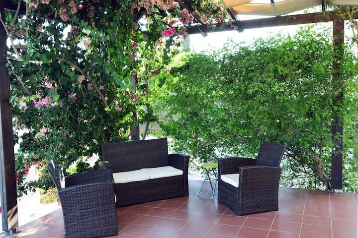 Sitting Area under the Bougambilias and Jasmine