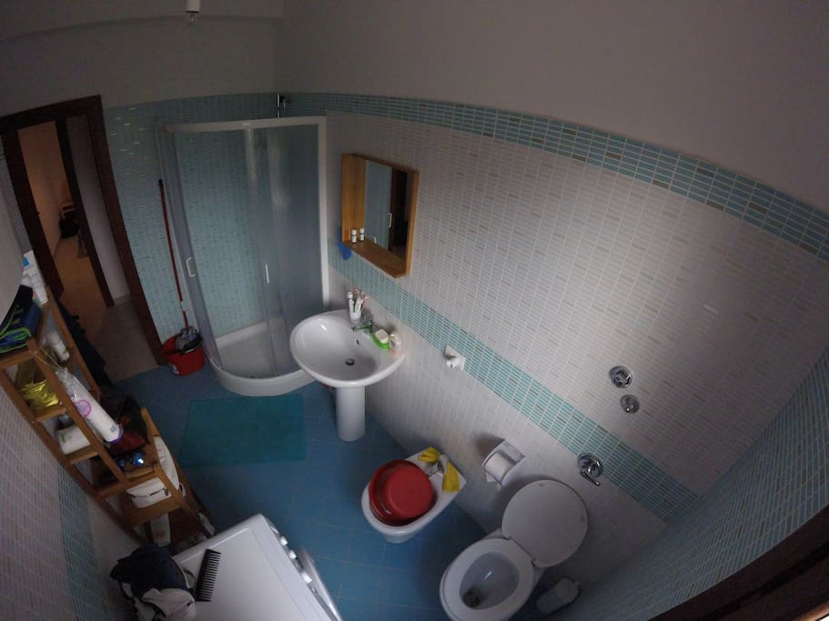 Independent bathroom with shower and washing machine.