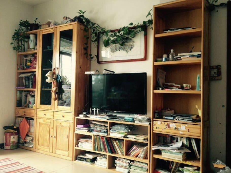 客厅电视机 书架