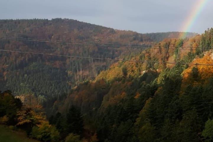 Teichschluchtblick am schönsten Wanderweg 2019