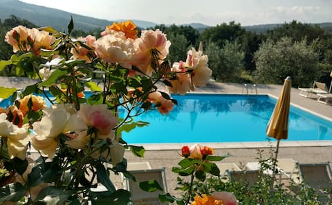 Natura, Piscina, Relax Agriturismo Selvadonica Aia