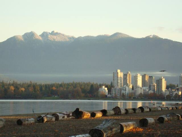 Beach Side- best Vancouver location! - Vancouver - Appartement