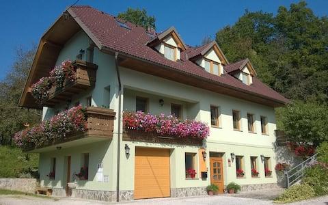 Big apartment near Kamnik
