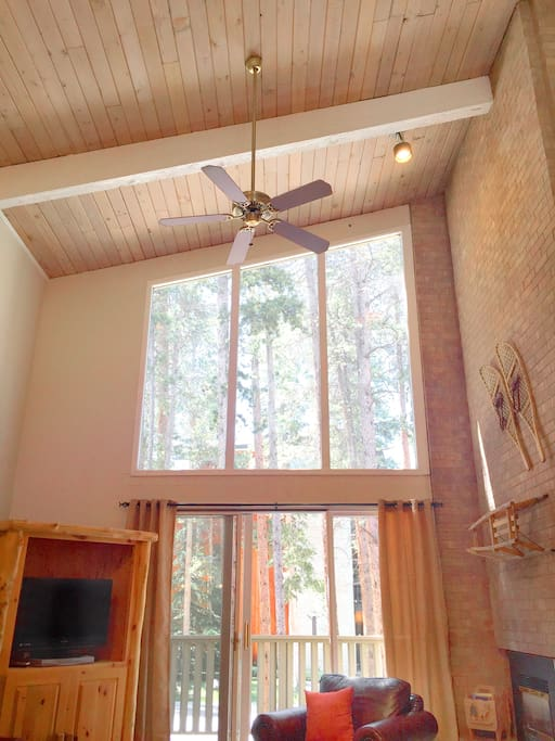 Gorgeous vaulted ceilings with exposed wood, and floor to ceiling windows.