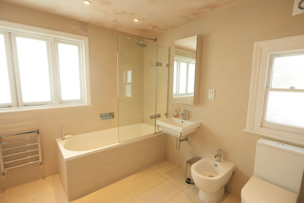 Here's the bathroom which has a shower bidet.
