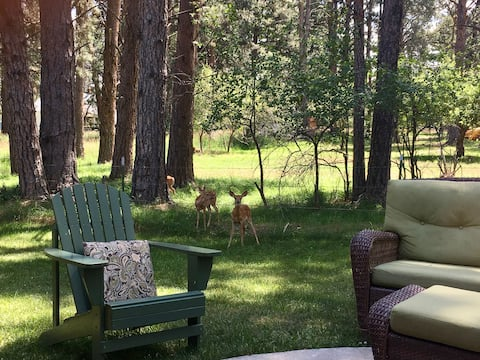 The Ponderosa House: 2 Bedroom Nest in the Pines