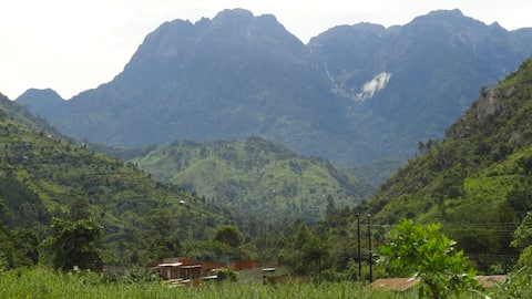Rwenzori Homestay