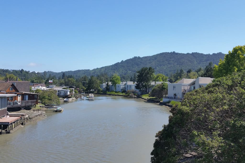 View from my deck - Corte Madera Creek and Mt. Tam