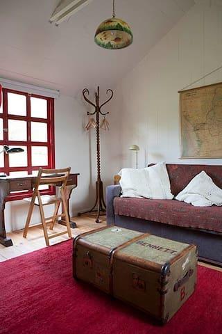 Le salon avec le canapé lit