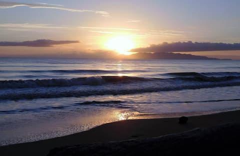 Saunders Beach Shack - on the beach