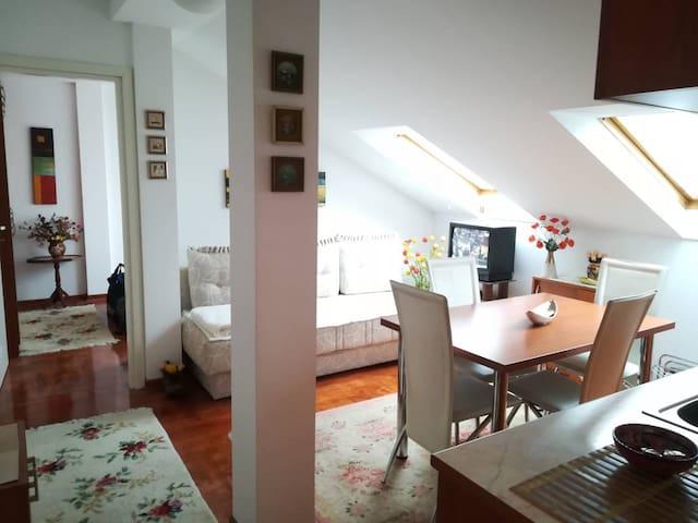 Apartman SS Vrnjacka Banja