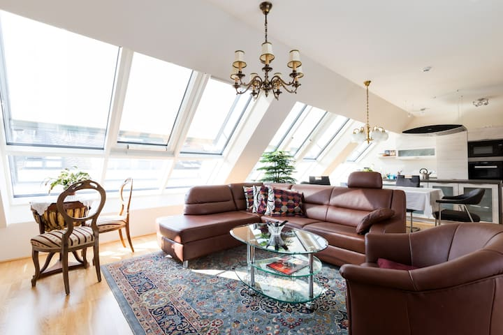 Big penthouse with terrasse and view - Vienne - Loft