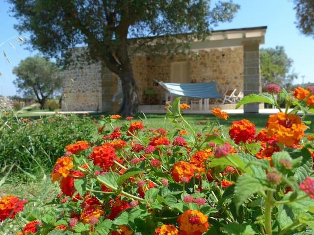 JACARANDA,fascinosa casa vicino Gallipoli - Galatone - Huis