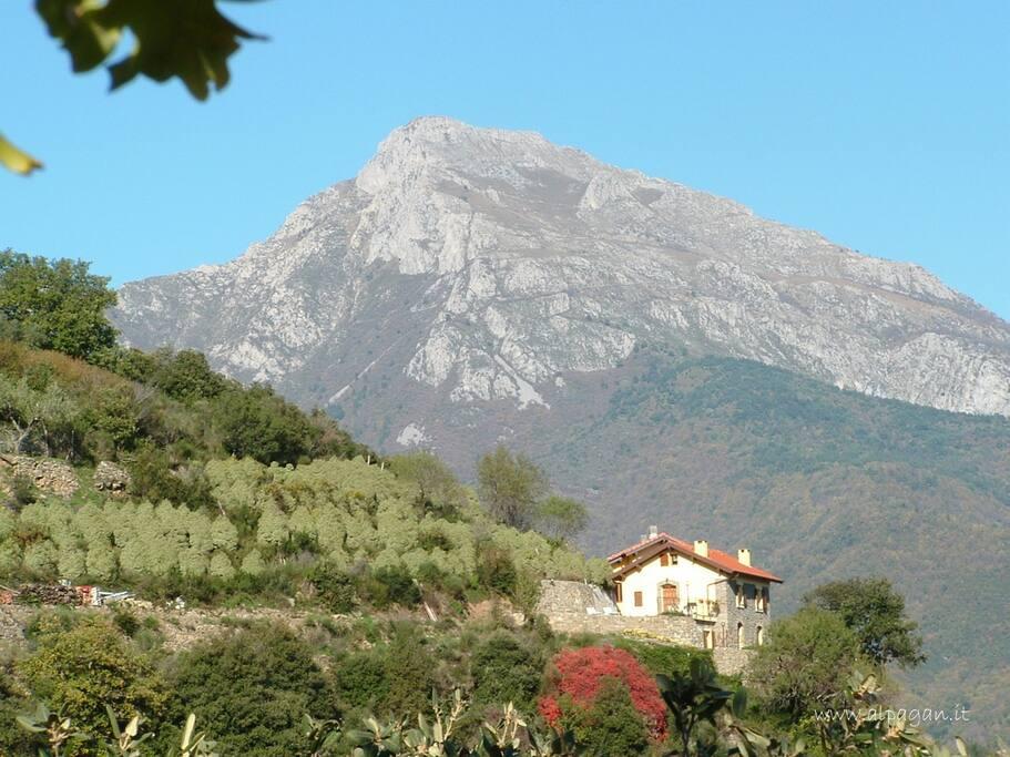 Panorama con il Monte Toraggio