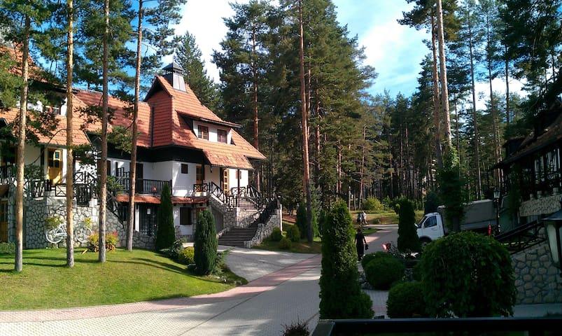 Kraljevi konaci -The Kings Shelters - Zlatibor - Appartement