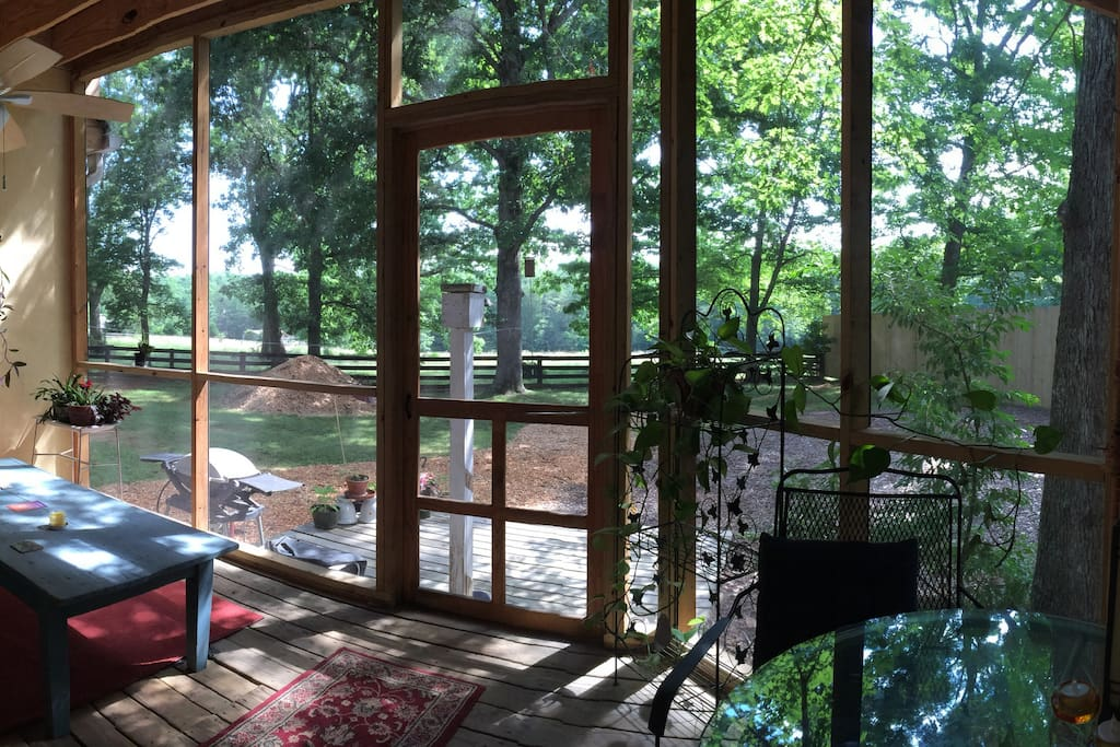 Back porch right off the guest bedroom. Screened, plants, couch and eating areas.