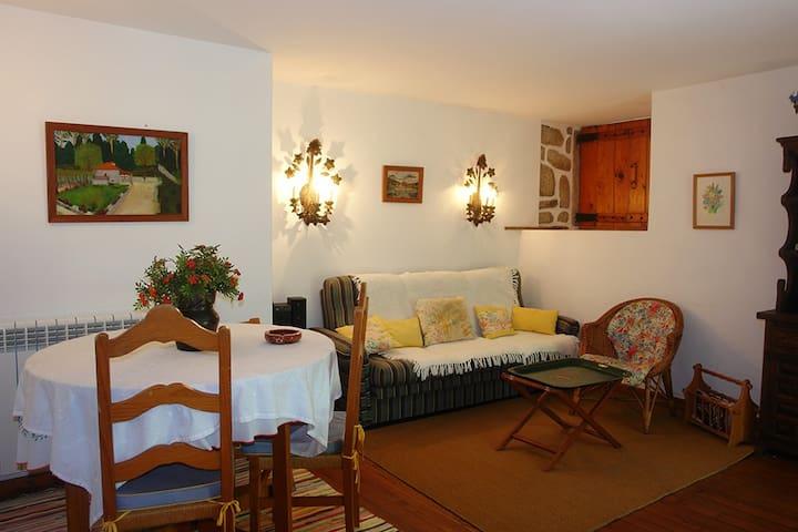 Toca cottage in Ponte de Lima - Ponte de Lima - Leilighet