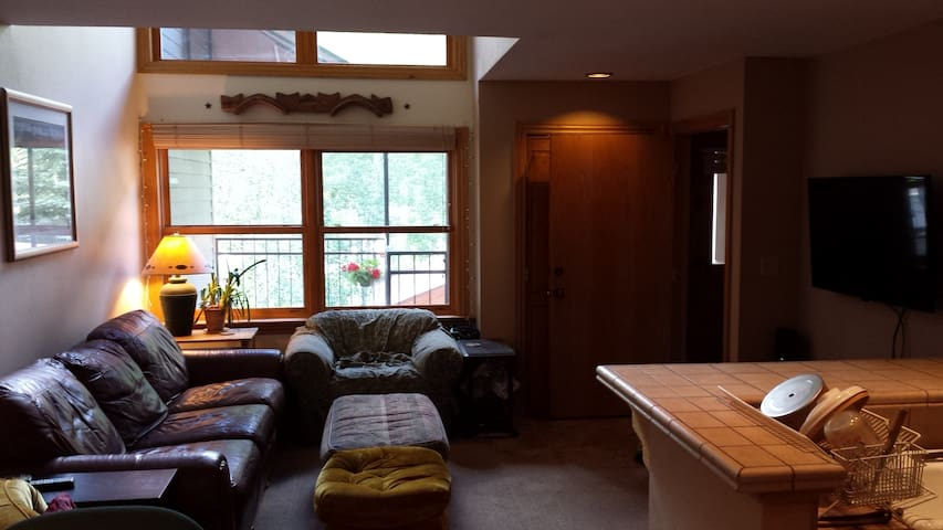 Spacious first floor in town. - Telluride - Pis