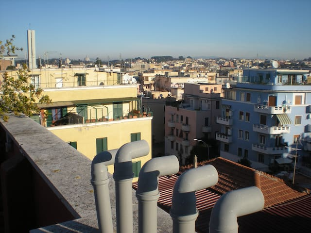The double bass - A wiew over the roofs of Rome