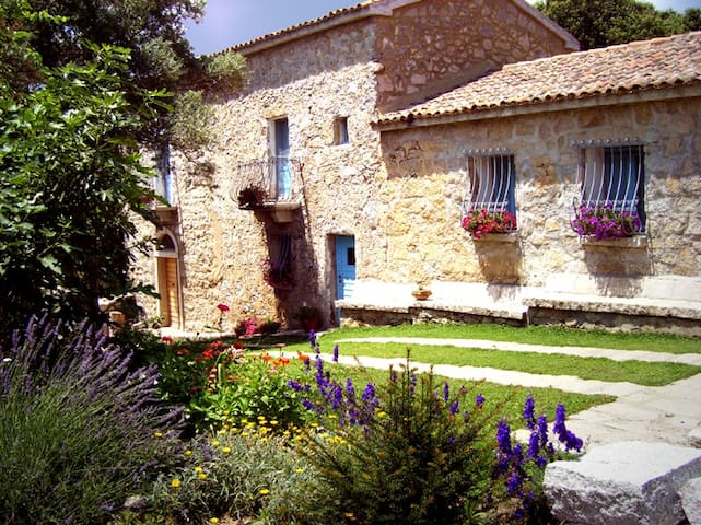 Casa Sadde - Sos Runcos - Bed & Breakfast