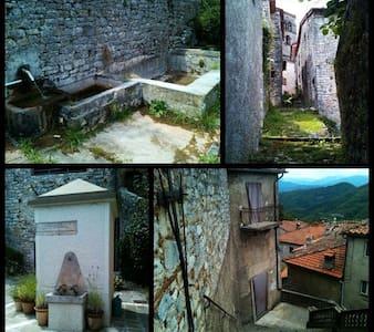 Relax in borgo medievale..... - motrone di borgo a mozzano - Dom