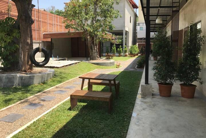 Outdoor/grass area.
