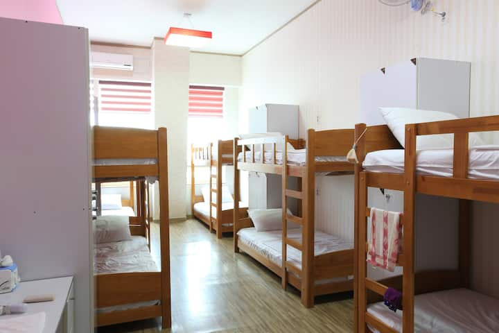 Terra Guesthouse Female Dormitory