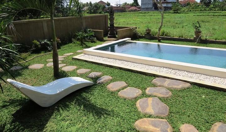 Ubud Bali Blue Cat Villa
