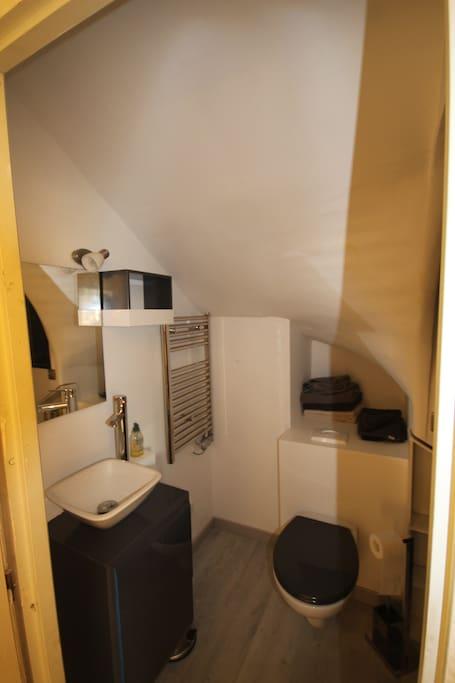 Salle de bain avec grande cabine de douche