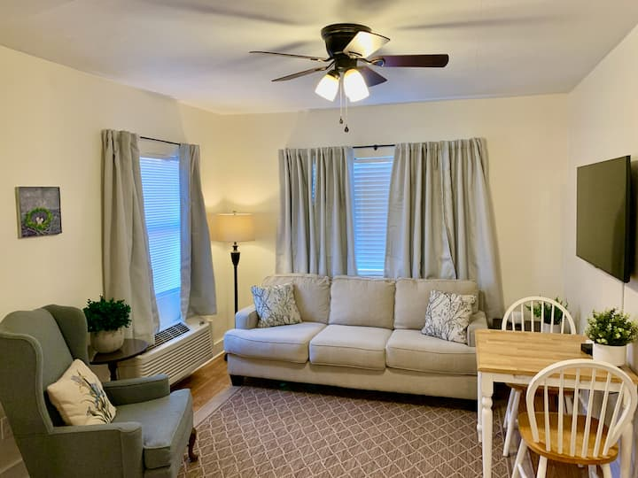 Clean & Comfortable 2 BR Apartment in Midtown