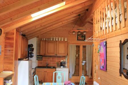 Chalet familiale - Vercorin - House - 2