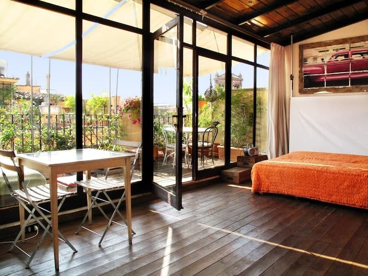 Artistic Loft, Terrace with a Spectacular View!