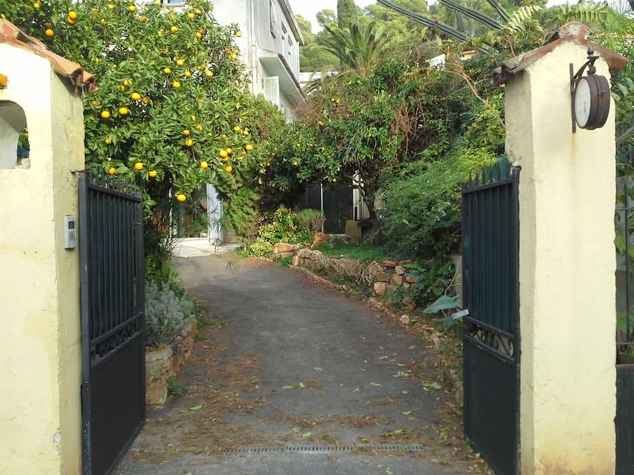 Entrée jardin et véhicule