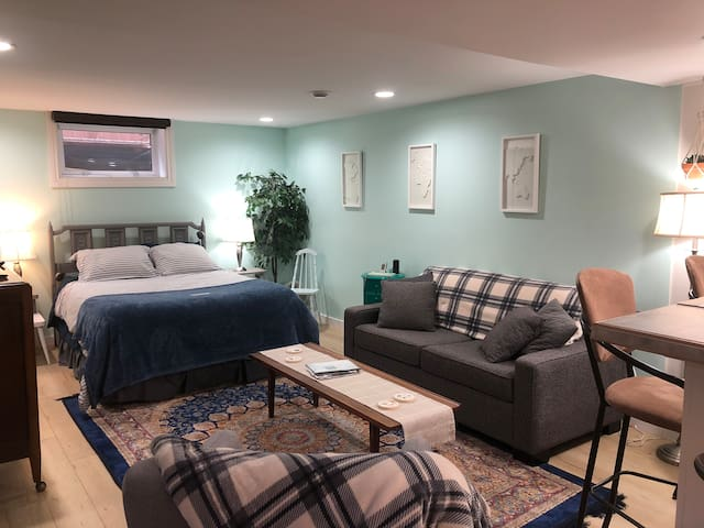 Studio basement suite with queen bed and sitting area