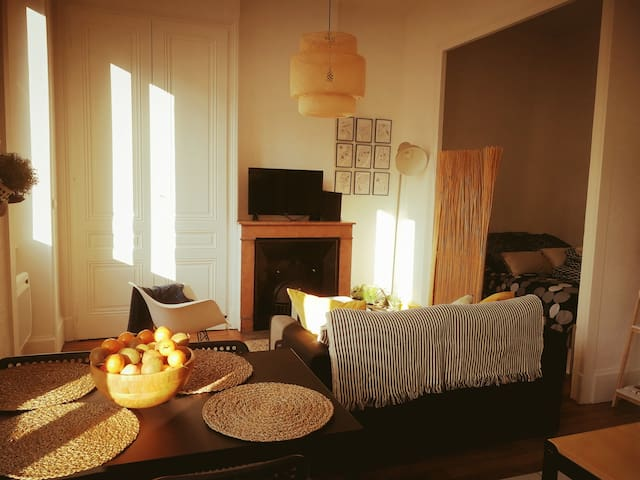 Beau studio typiquement Lyonnais