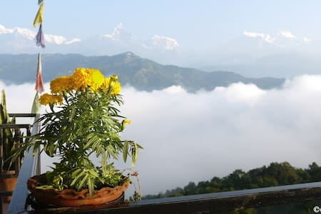 Peace Dragon Lodge & Restaurant - Pokhara