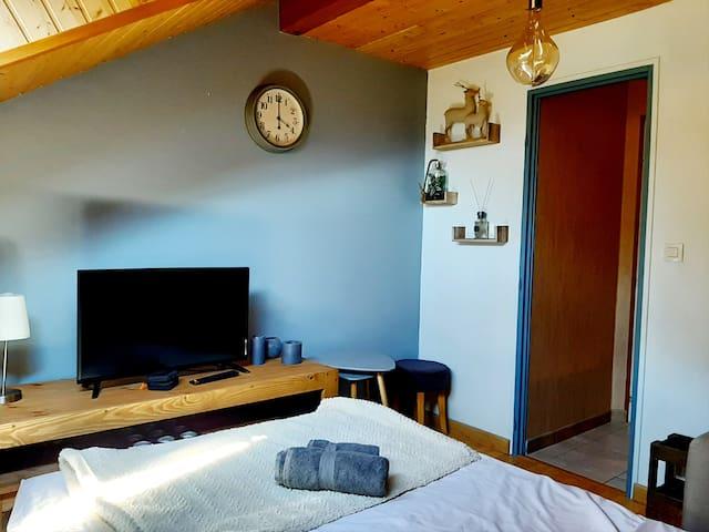 Salon avec canapé lit déplié (2 personnes - couchage 140) Un lecteur DVD avec écran. Mise à disposition de dessins animés