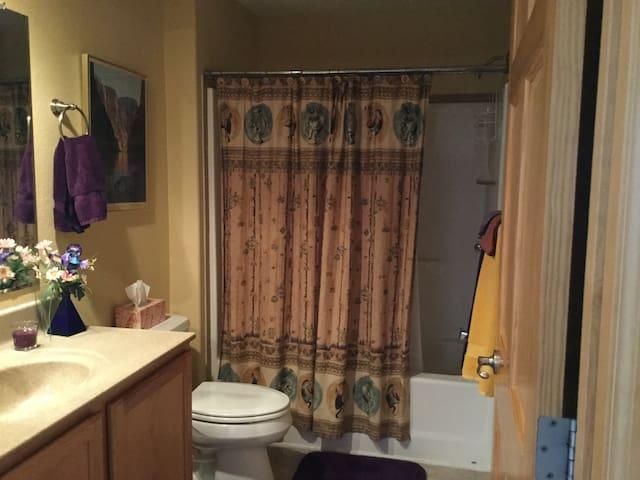 The dedicated guest bathroom, tub, and shower.  Has lockable door.
