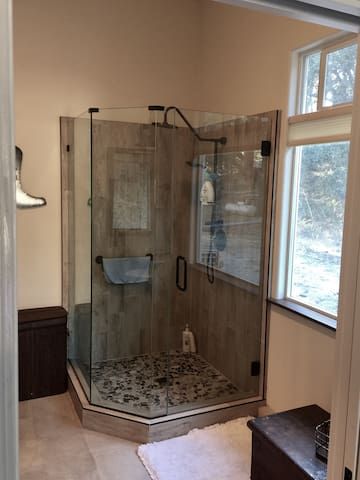 Full size double head shower