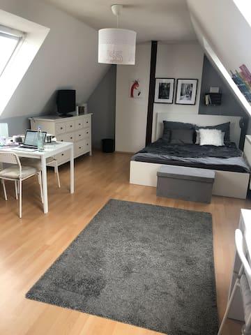 Großes helles Zimmer in zentraler Maisonettewohung