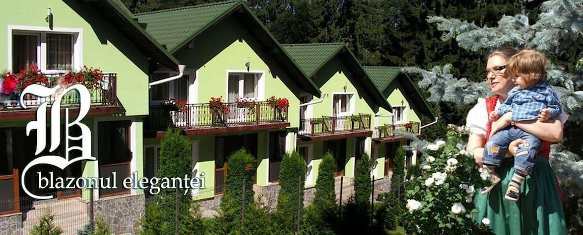 Vila Bogdana - Predeal - Huis