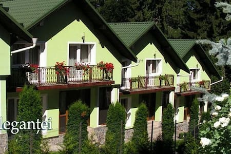 Vila Bogdana - Predeal