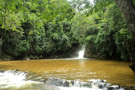 Enjoy the Brazilian Atlantic Forest - Alfredo Chaves