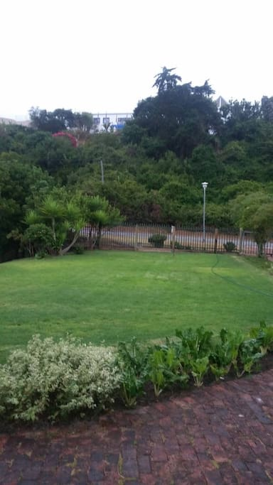 Front view of the garden and beautiful Wilderness Bush