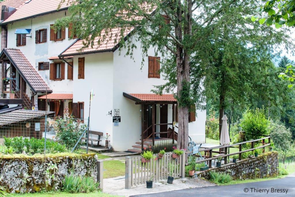 Deliziosi attimi di pace appartamenti in affitto a for Appartamenti in affitto a pordenone arredati