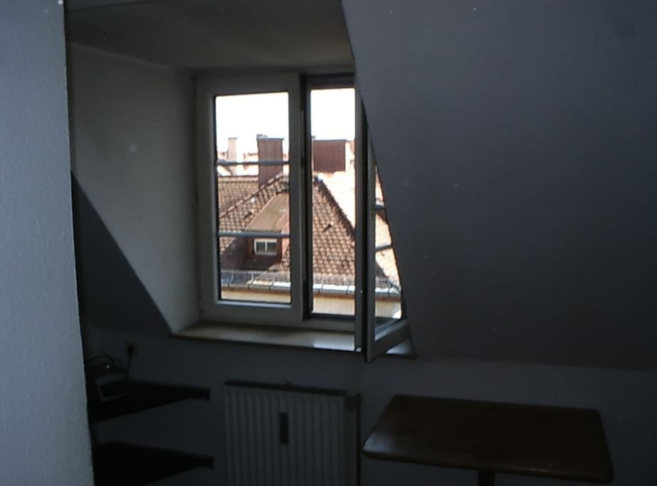 View out the window
