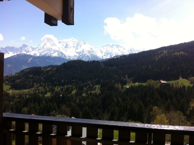 Cordon with view on the Mont Blanc
